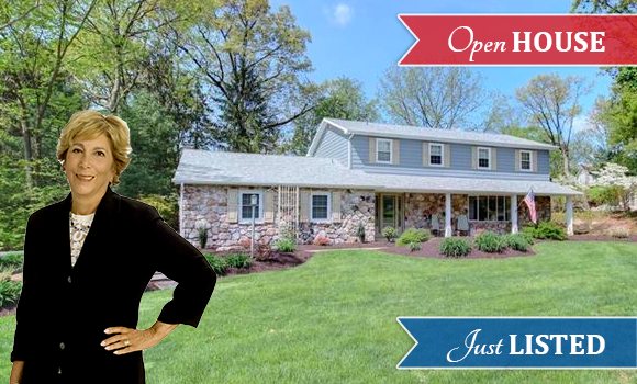 1464 Red Maple Lane, South Whitehall Twp